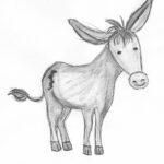 Esel-Suchbild